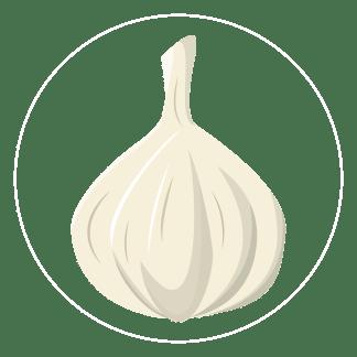 garlic-icon