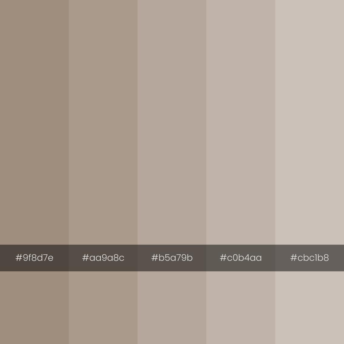 color-palette-2000-2000-cave-dust-monochrome
