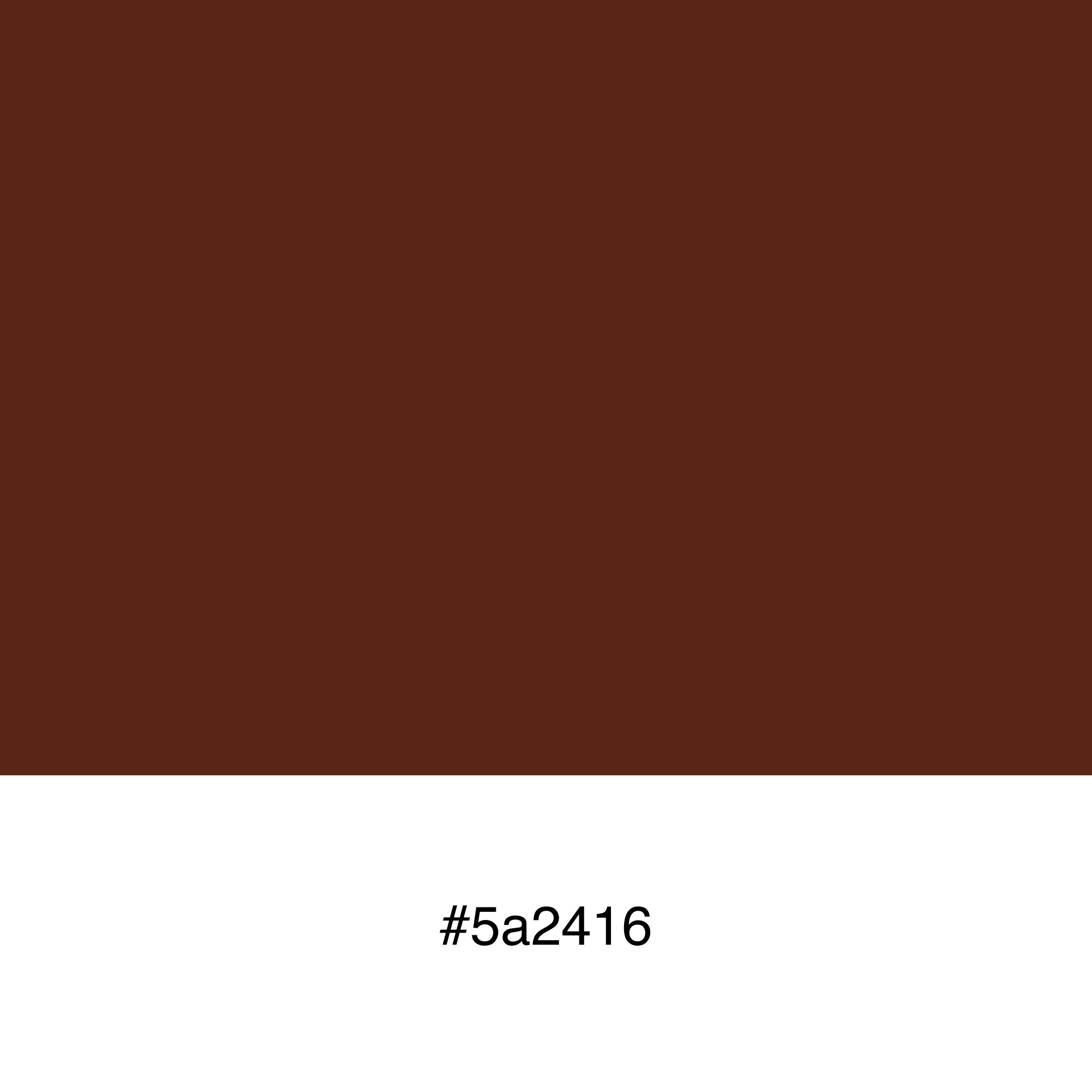 color-swatch-5a2416