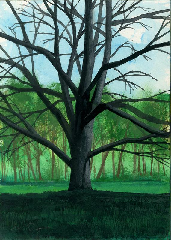Tree-58.jpg