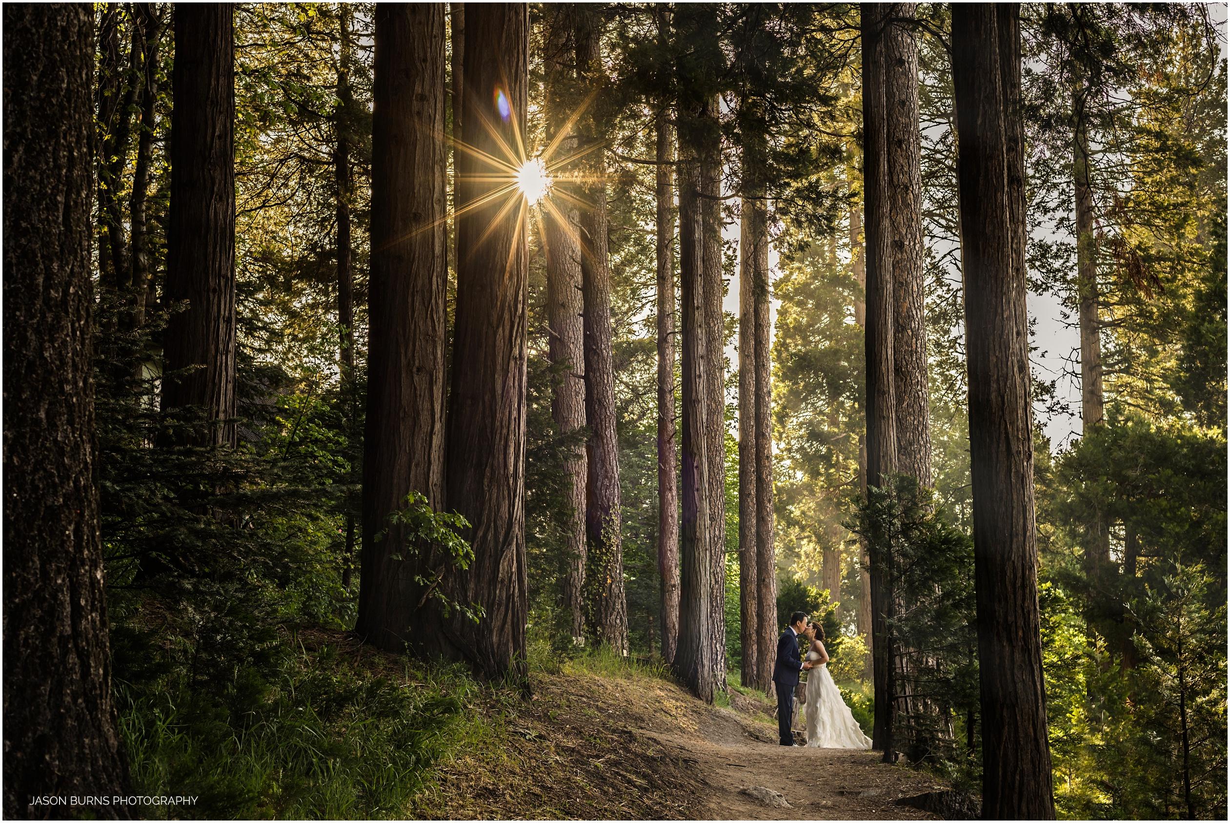 Lake-arrowhead-resort-wedding-pine-rose (4)