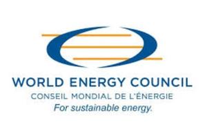 World Energy Council(1)_JasonDrew