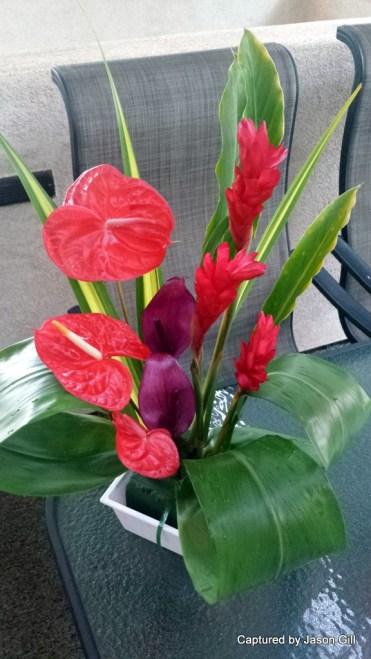 Flower Arrangements (1)