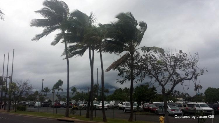 Windy Maui