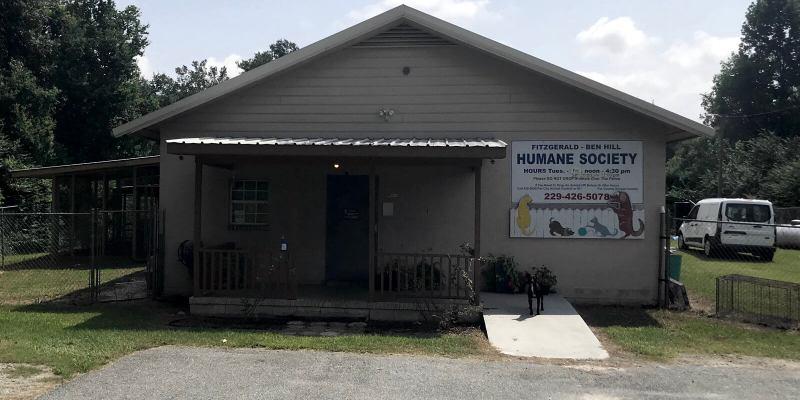 A local humane society, Fitzgerald-Ben Hill Humane Society in Fitzgerald, Georgia, is example 3 of how I plan digital marketing campaigns