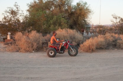 Spyder returning to the Ponderosa after talking to a neighbor. Slab City, California 2018