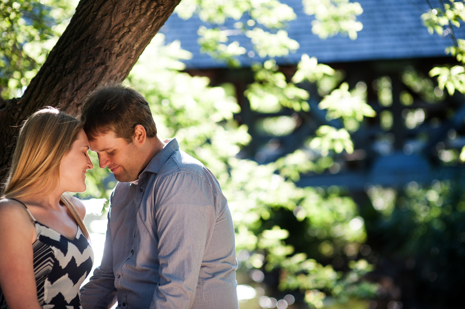 Engagement session of couple under tree at the river walk in Naperville Illinois