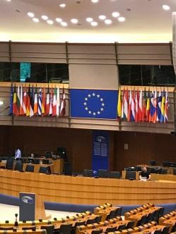 Inside the plenary chamber.