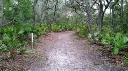 Start of Blackrock Beach trail