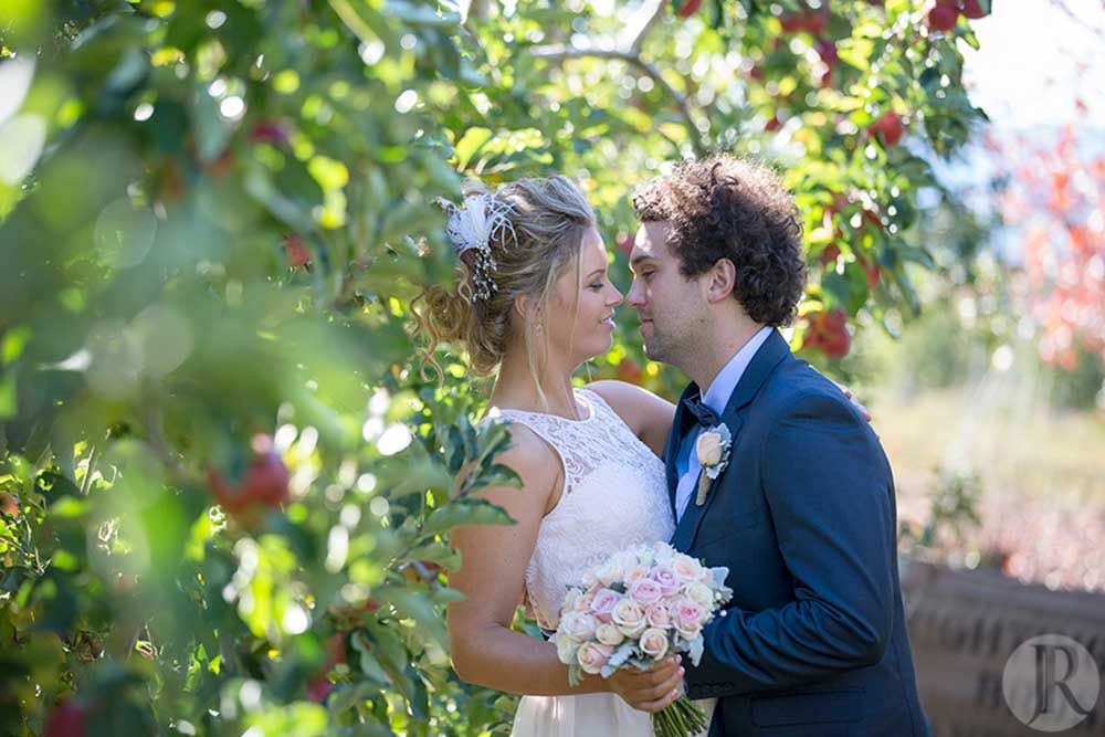 bride and groom in an apple orchid in Wandiligong Victoria