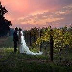 Boynton's Feathertop Winery Wedding Photography