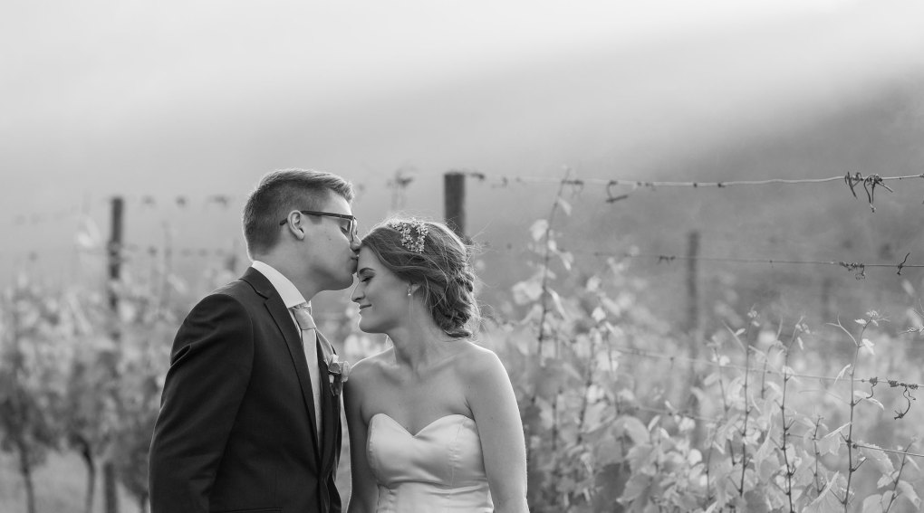 Bright Wedding Photography at Feathertop Wines by AIPP Photographer Jason Robins