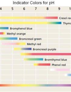 Indicator color chart also assessment rh jasonstark