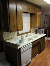Before Custom Kitchen Cabinet Remodel - Kitchen #2