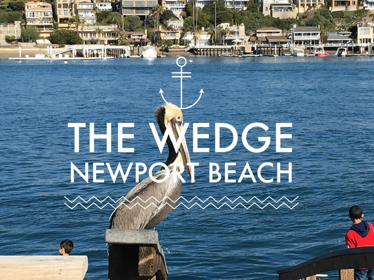 Newport Beach Timelapse 1