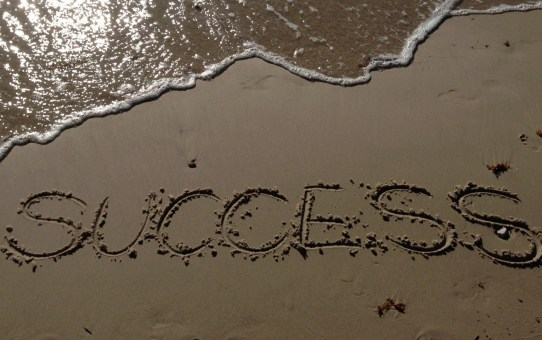"""Success Should..."