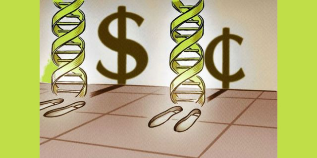 The ABCs of Investors' DNA