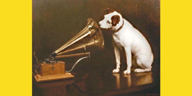 Radio and Podcasts