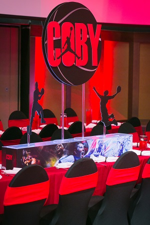 chair covers design silver metal chairs basketball bar mitzvah at infinity park | ja special events