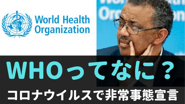 世界保健機関(WHO)とは何か?わかりやすく簡単に解説。コロナウイルス対策で緊急事態宣言?