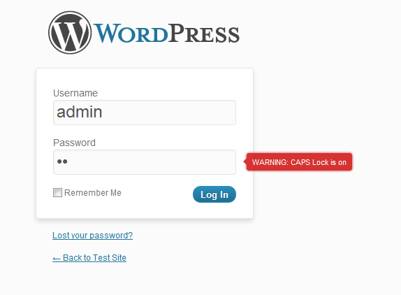 Wordpress CAPS lock detection plugin view