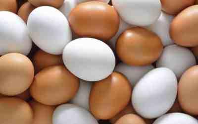 Los beneficios de consumir huevo