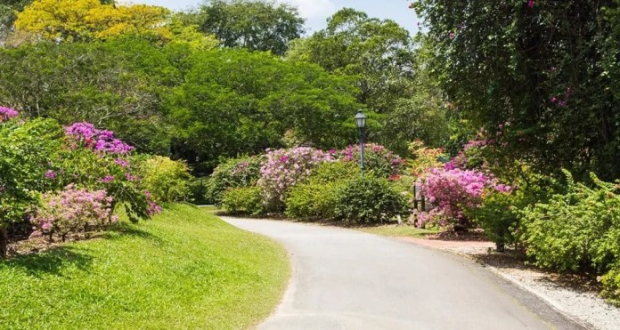 Botanic Gaden Singapura yang akan jadi inspirasi pembangunan hutan kota Surabaya