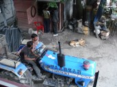 A dog sleeping on a street in Manali