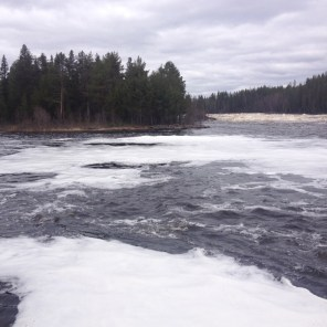 Vy från Lammaslahti mot Linkansaari och Mestoslinkka. Mycket skum på vattenytan i förgrunden.