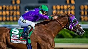 California Chrome and the Triple Crown Journey