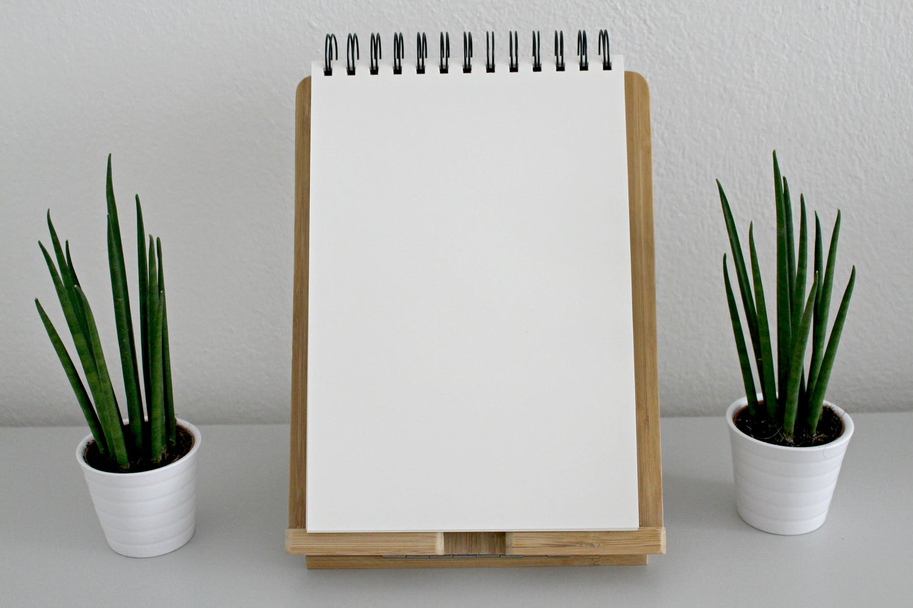 blank book pages desk green