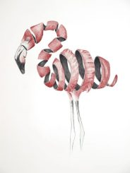 Flamenco: 50x32,5cm. – Ballpoint pen on paper, 2013 - SOLD