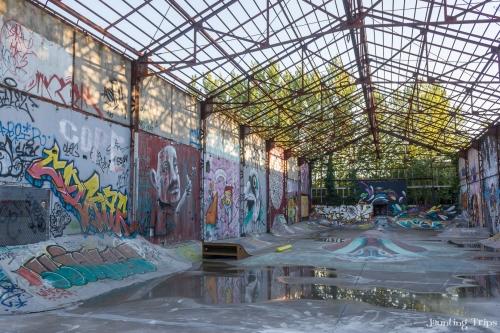 Skate park in Darwin's Eco-sytème