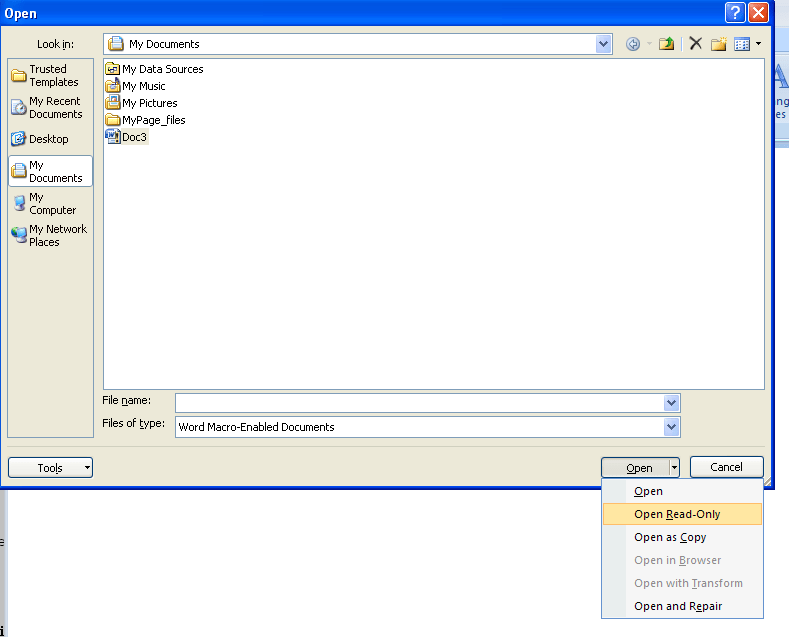 Document Opening Options In Word 2007 : Document Open