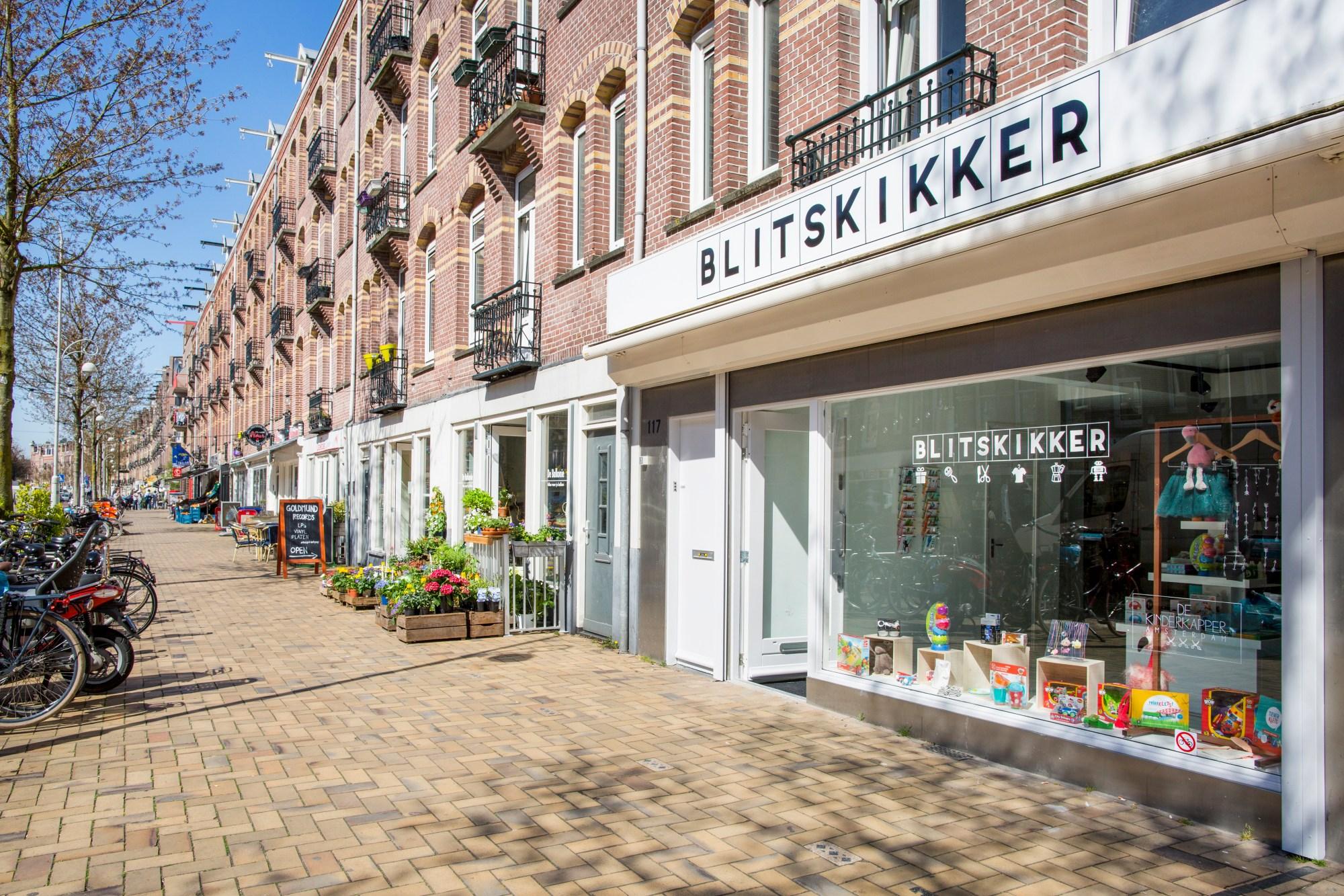 Gevel Blitskikker in de Javastraat in het Javakwartier - Janus van den Eijnden