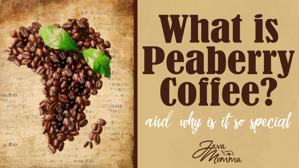 What is Peaberry Blog Graphic