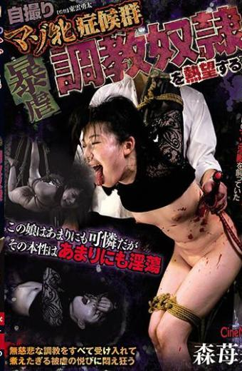 Self-portrait Masochism Syndrome Violent Training Woman Aspiring To Slave Morisori Seki