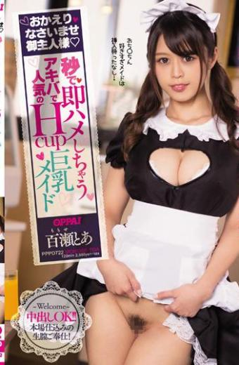 Welcome Back Hello Mr. Momose Huge Busty Maid Who Is Popular With Akihabara Who Immediately Felt In Her Master