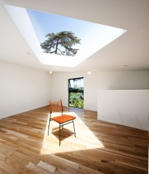 Big & Small House Josep