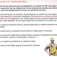 Derechos y deberes de los trabajadores en materia de PRL. Responsabilidades.