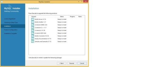Instalación y Configuración de MySQL en Windows 13