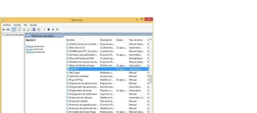 Instalación y Configuración de MySQL en Windows 30