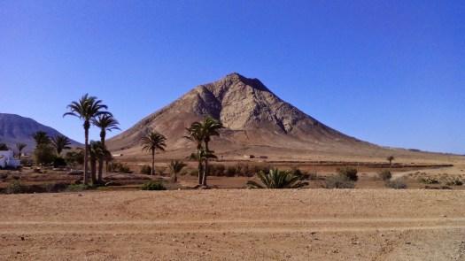 Todo tiene su momento - Fuerteventura