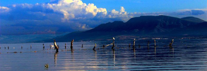 cropped-lago-de-chapala3.jpg
