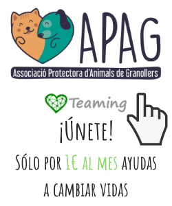 APAG y Teaming