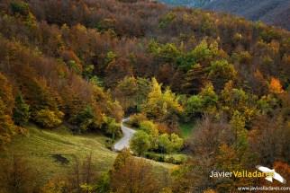 otoño 9