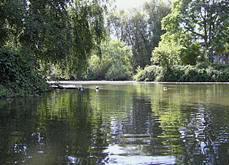 Arboretum (Seattle)