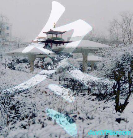 Invierno 立冬