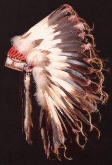 Penacho de plumas. Mitología del noroeste de los Estados Unidos.
