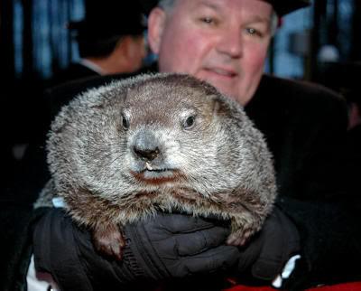 Punxsutawney Phil, la marmota meteoróloga